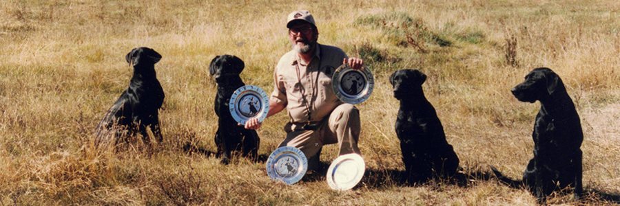 Four Master Hunter labrador retrievers with Woody