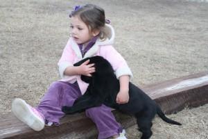 Girl with Labrador Retriever puppy