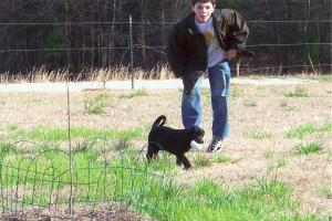 Teenager with Labrador retriever puppy