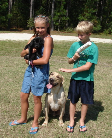 Children with Labrador retrievers