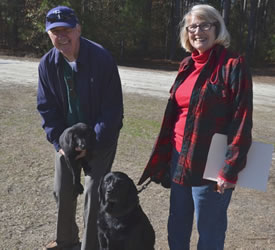 This older couple knows the value of owning Labrador retrievers.