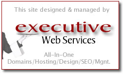 Executive Web Services Site